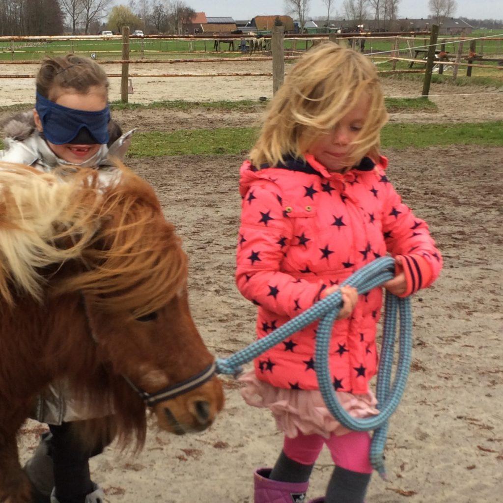 Pony Paddock-cursus tussen Hemel en Paarden is er ook om het zelfvertrouwen te vergroten