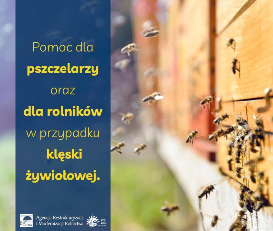 Rusza Pomoc Dla Pszczelarzy 900x763