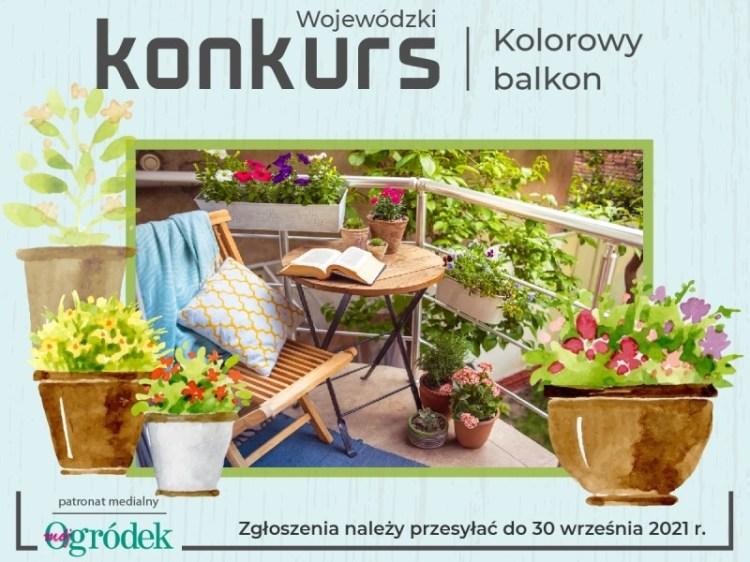 Konkurs Kolorowy Balkon 4 3