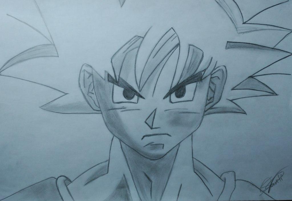 """""""Dedicado a la serie japonesa llamada Dragon Ball. El personaje que está dibujado es el protagonista que se llama Goku. Este dibujo lo hice hace un año"""" (Santiago)."""