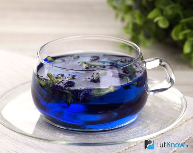 Order online Purple Chang Shu Tea: where to order, cost, Real Consumer Reviews