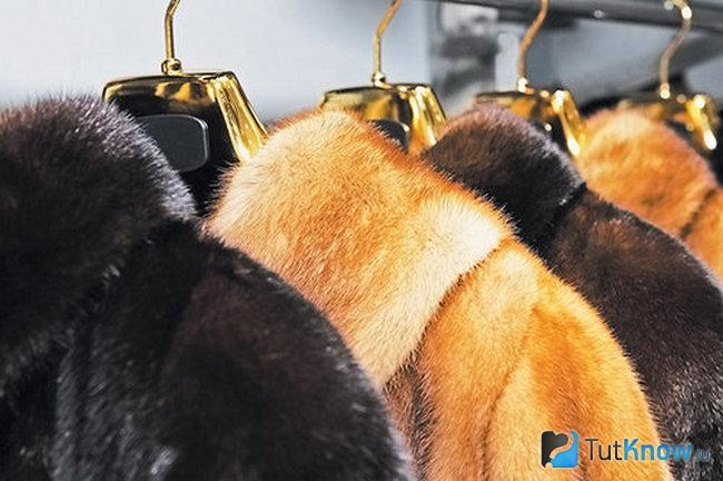 Raccoon Fur Coat Care At Home How To, How Much Does It Cost To Get A Fur Coat Cleaned