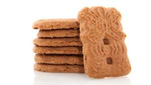 speculoos2