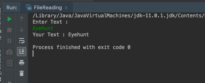 Read Text from console in Java
