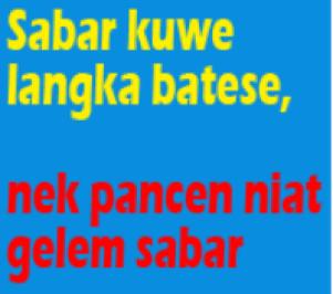 koleksi dp bbm bahasa jawa ngapak