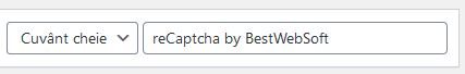 recaptcha-wordpress-2