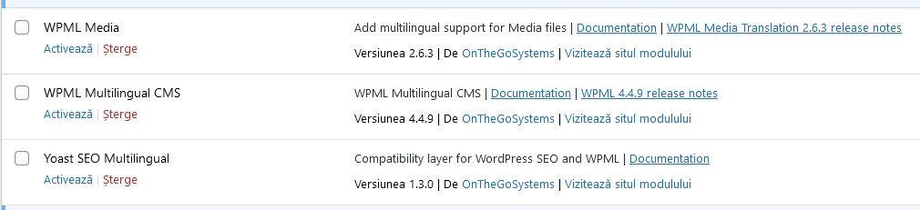 Instalarea pluginului WPML