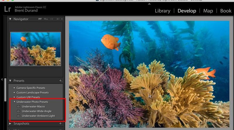 lightroom presets panel with installed presets