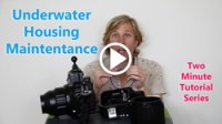 underwater housing maintenance thumbnail