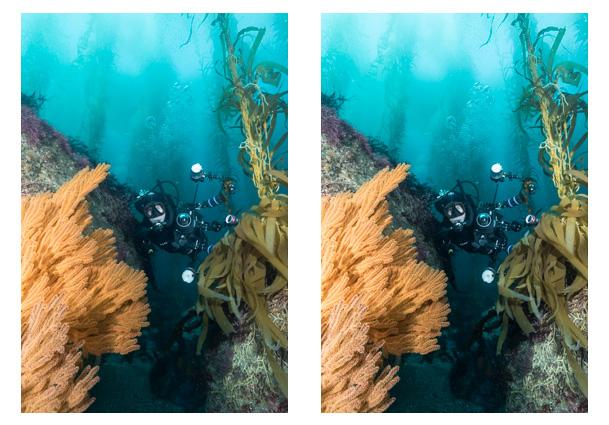 clarity-lightroom-for-underwater