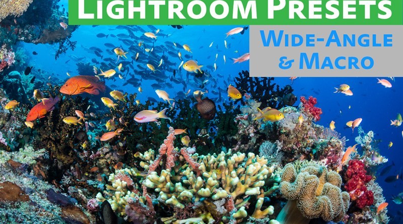 Free Lightroom Preset Pack Underwater Photography