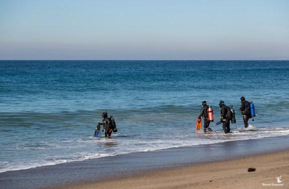 california-shore-divers-in-malibu