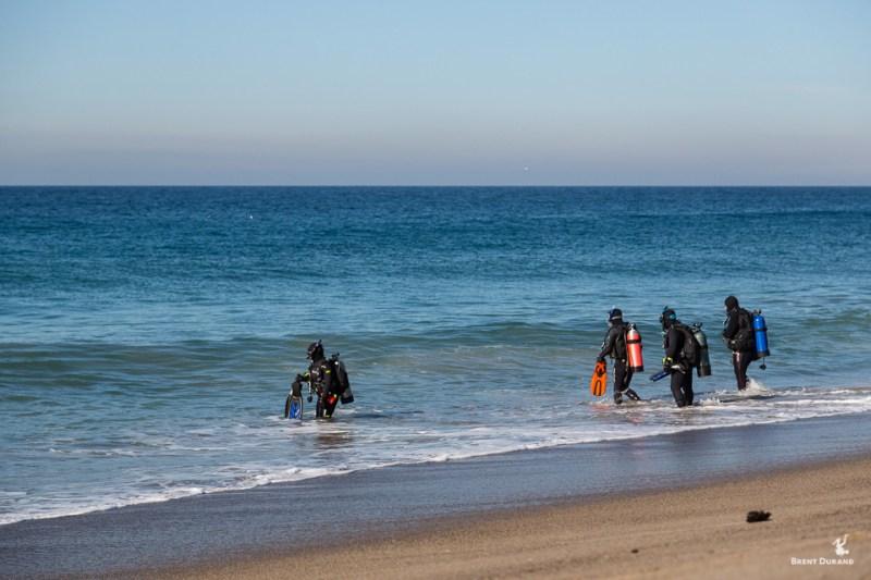 california shore divers in malibu