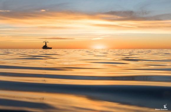 squid-fishing-boat-in-redondo-beach