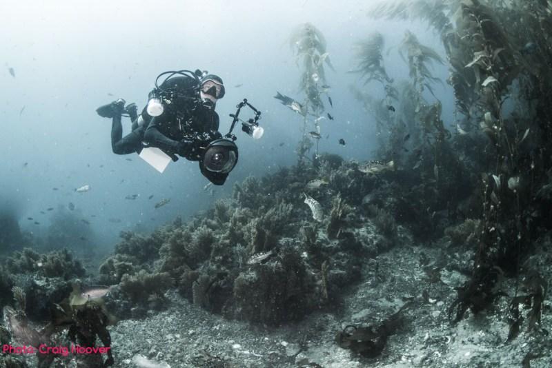 brent durand scuba diving underwater