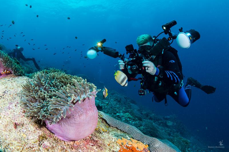 scuba diver using dual strobe camera system