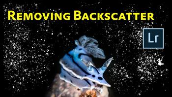 Removing Backscatter Video Tutorial thumbnail.