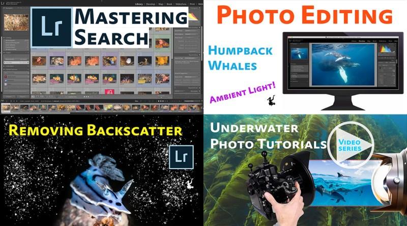 lightroom editing video tutorial series