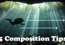 5 Basic Underwater Composition Tips
