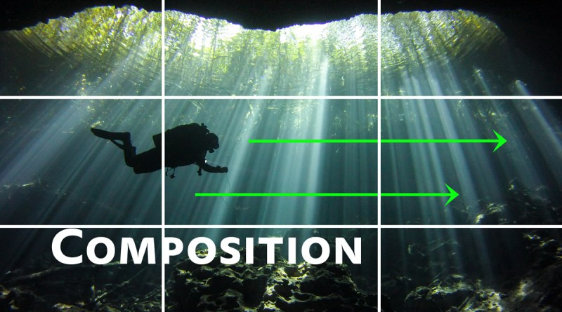 Photo Composition Tips for Underwater