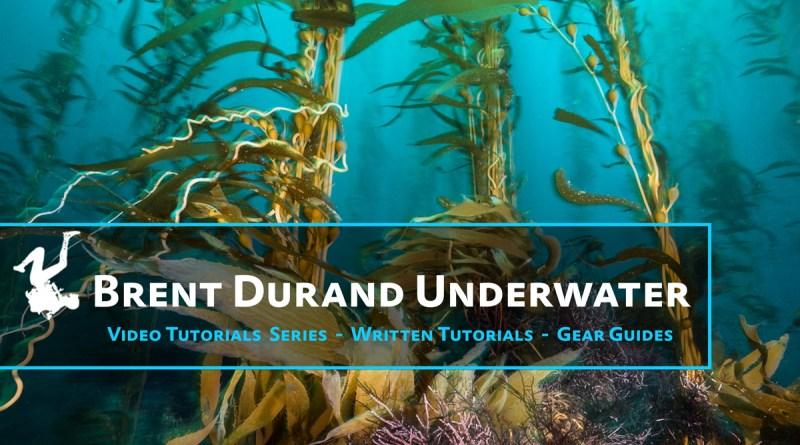 Brent Durand Underwater Photo Tutorial Videos