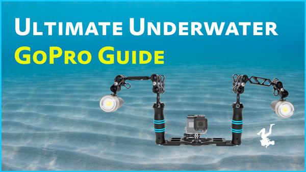 Ultimate Underwater GoPro Guide
