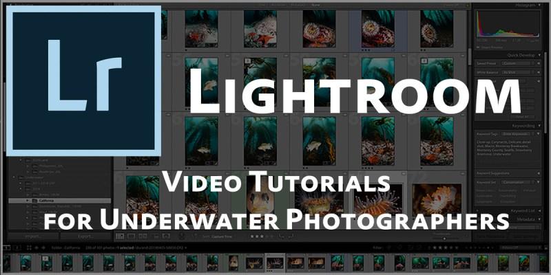 lightroom video tutorial series
