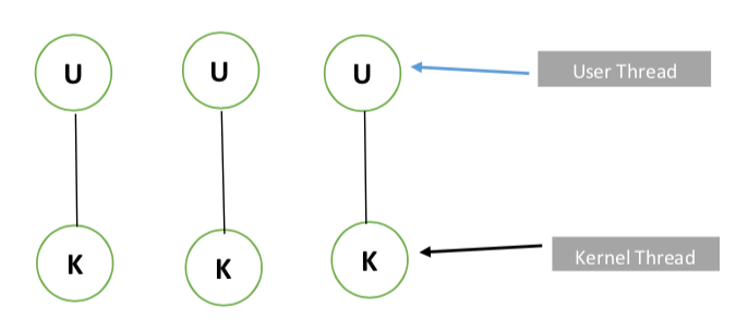 Tutorialwing Operating System One to One MultiThreading Model example of MultiThreading Models