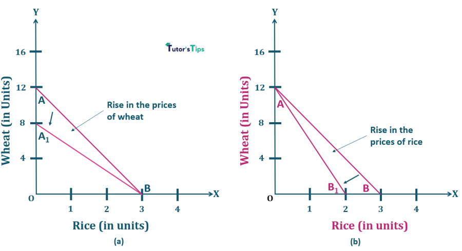8.Rise in Price of one commodity-Properties of Budget Line