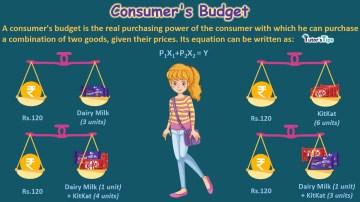 consumer budget min 1 - Business Economics