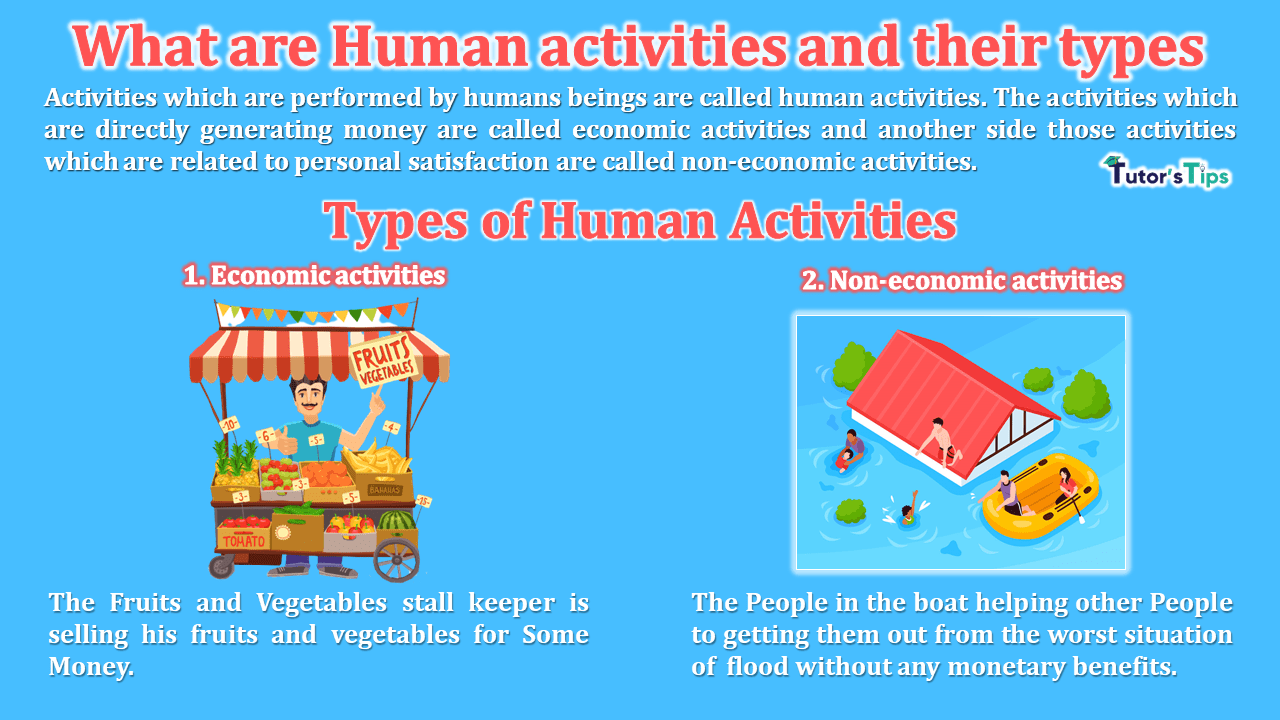 What are Human activities and their types - Business Studies