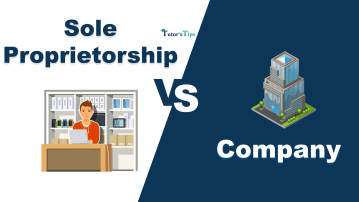 Diffrence between Sole Proprietorship and Company min - Differences - Business Studies