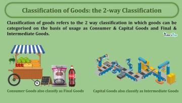 Classification of Goods the 2 way Classification min - Business Economics