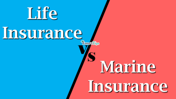 Difference between Life Insurance and Marine Insurance min - Differences - Business Studies