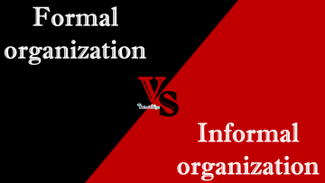 Difference Between Formal organization and Informal organization min - Differences - Business Studies