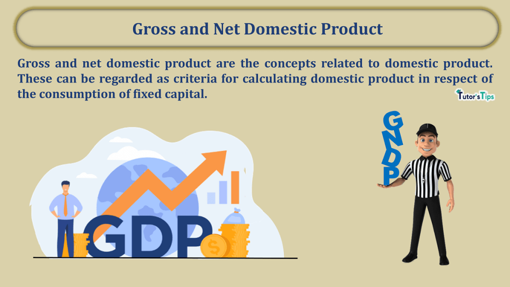 Gross and Net Domestic Product