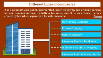 Different-Types-of-Companies