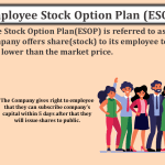 Employee-Stock-Option-Plan-ESOP