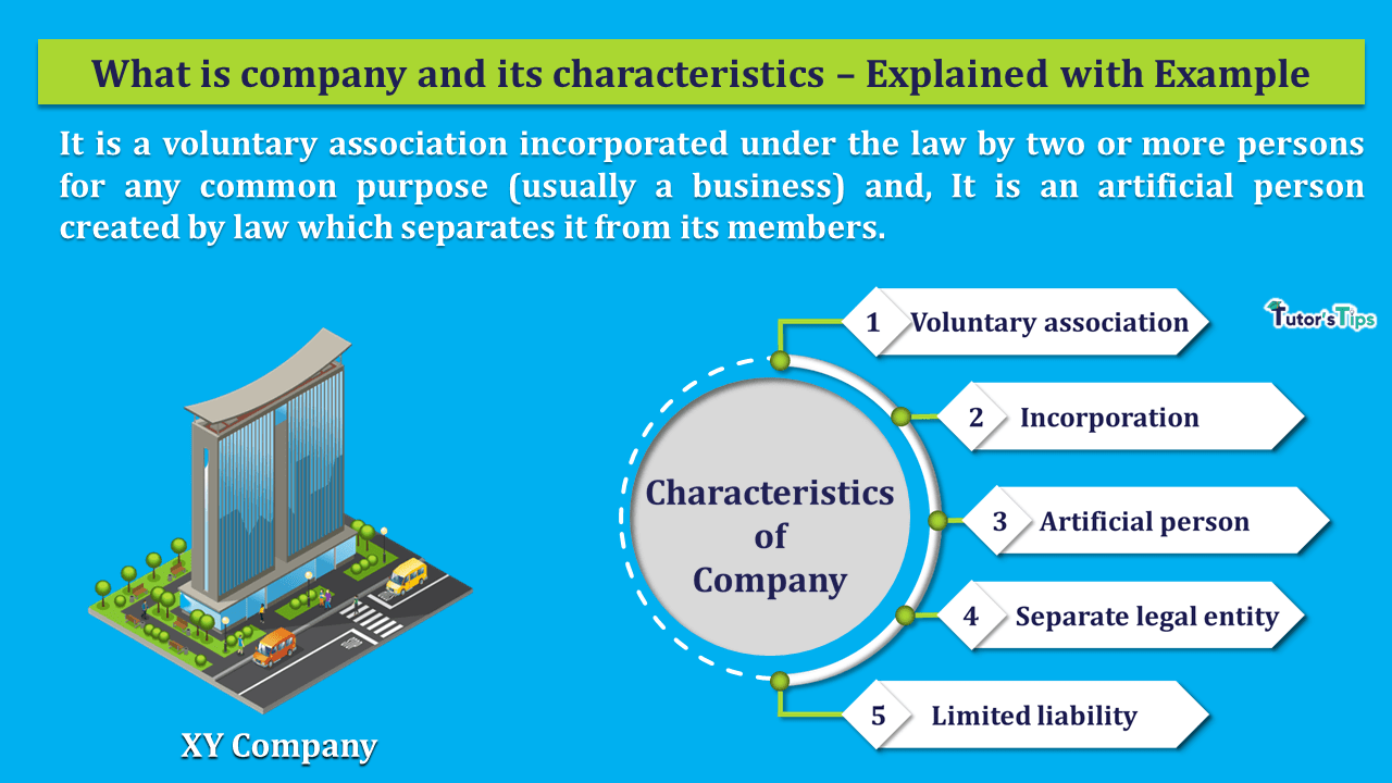 What-is-the-Company-and-its-Characteristics-min