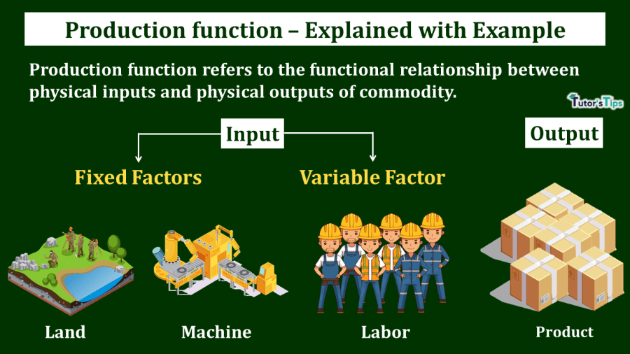 Production-Function-Meaning-and-Types