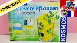Plantes intelligentes  | Jusqu'à quel point les plantes sont-elles intelligentes?