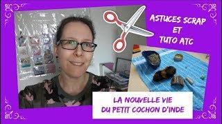 Vlog 139 – Cochon d'inde / Astuces scrap / Tuto ATC