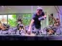 """Projet """"J Well"""" : un aquarium décoré façon aquascaping en entreprise"""