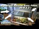 Tuto: aquarium naturel SANS FILTRE ! cichlidé tanganika /Poubellarium intérieur/ cichlids-import.com