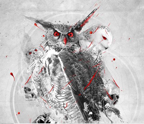 Montage photo Owls design avec photoshop