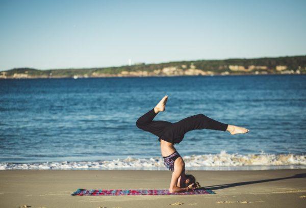 yoga palestra fitness