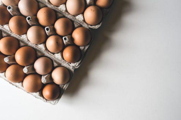 eggs egg uovo uova albumi brick proteine cibo sano alimentazione studenti fuorisede