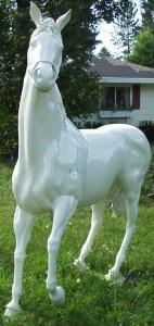 Whitehorse 14