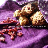 Biscotti ai Fiocchi d'Avena e Mirtilli Rossi