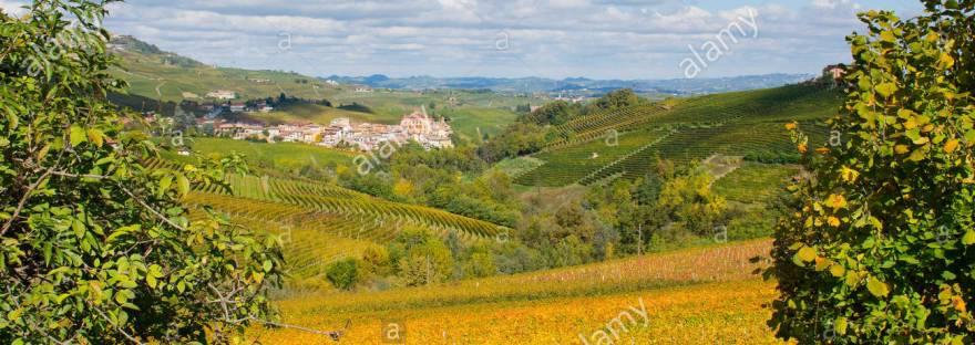 Piemonte tutte le notizie in tempo reale. Tutto sulla Regione Piemonte accuratamente aggiornato e completo! LEGGILO E CONDIVIDILO!